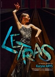 affiche letras spectacle flamenco