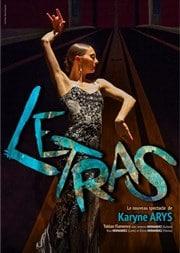 affiche letras spectacle flamenco